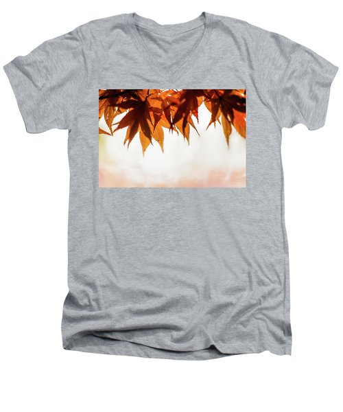The Eaves Of Season Men's V-Neck T-Shirt