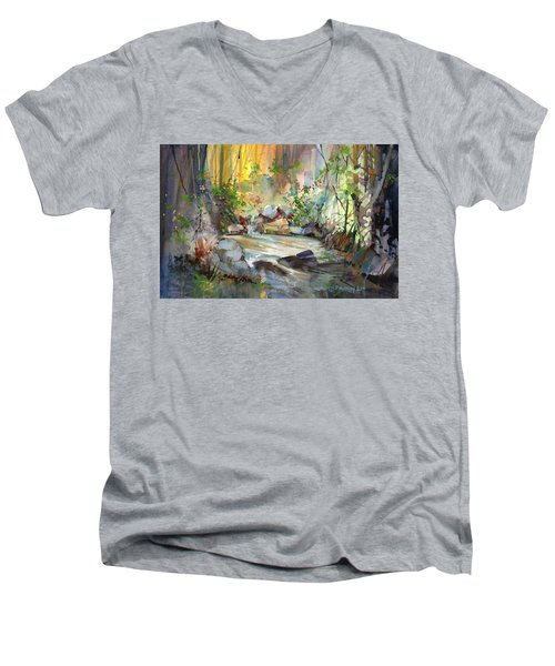 The Enchanted Pool Men's V-Neck T-Shirt by P Anthony Visco