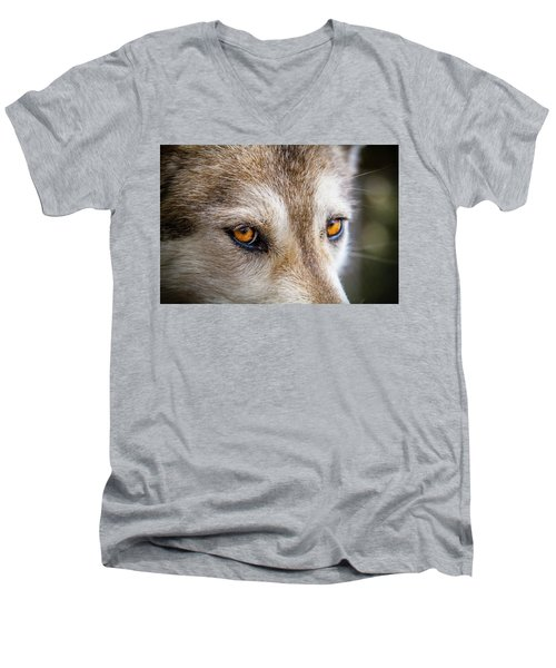 Men's V-Neck T-Shirt featuring the photograph The Eyes Of A Great Grey Wolf by Teri Virbickis
