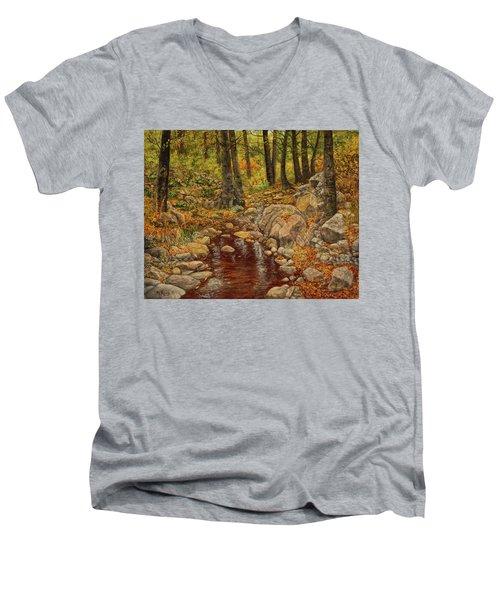 The Fall Stream Men's V-Neck T-Shirt