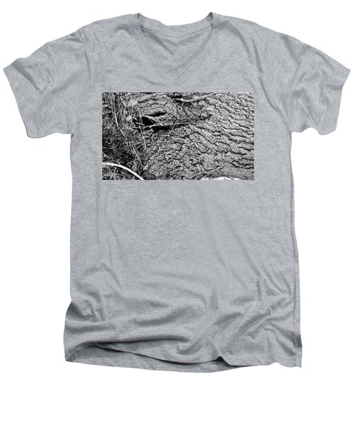 The Fallen - Dragon Eye Men's V-Neck T-Shirt