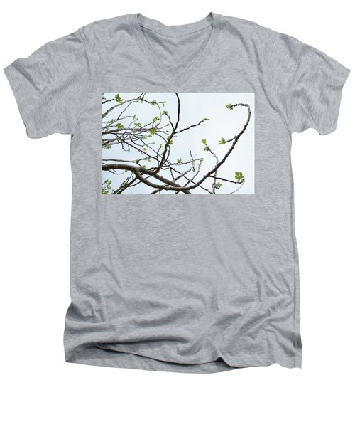 The Fig Tree Budding Men's V-Neck T-Shirt