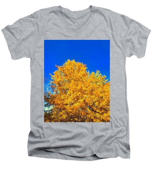 The Flare Of Fall On A Clear Day Men's V-Neck T-Shirt