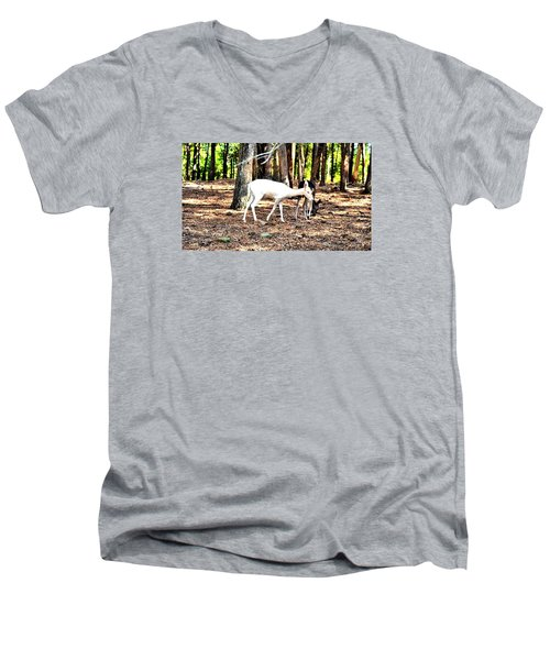 The Forest And The Deer Men's V-Neck T-Shirt by James Potts