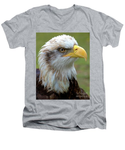Men's V-Neck T-Shirt featuring the photograph The Gaurdian by Stephen Melia