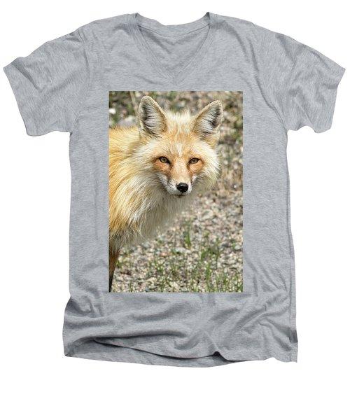 The Gaze Men's V-Neck T-Shirt