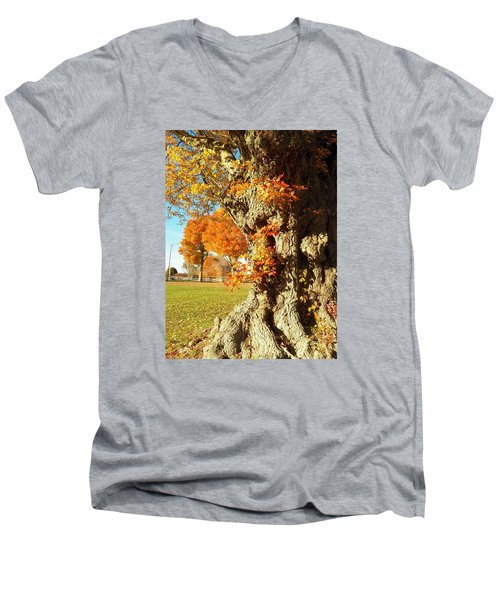 The Gnarly Tree Men's V-Neck T-Shirt