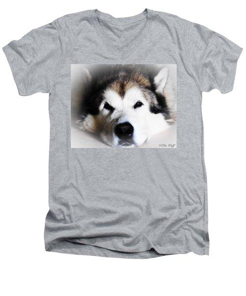 The Great Alaskan Men's V-Neck T-Shirt