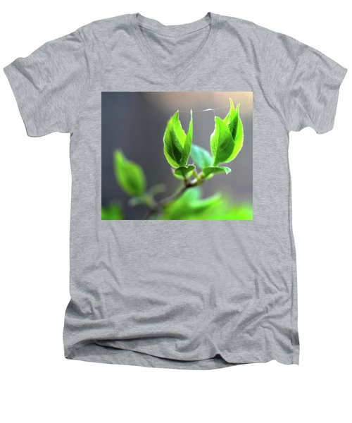 The Green Leaf Men's V-Neck T-Shirt
