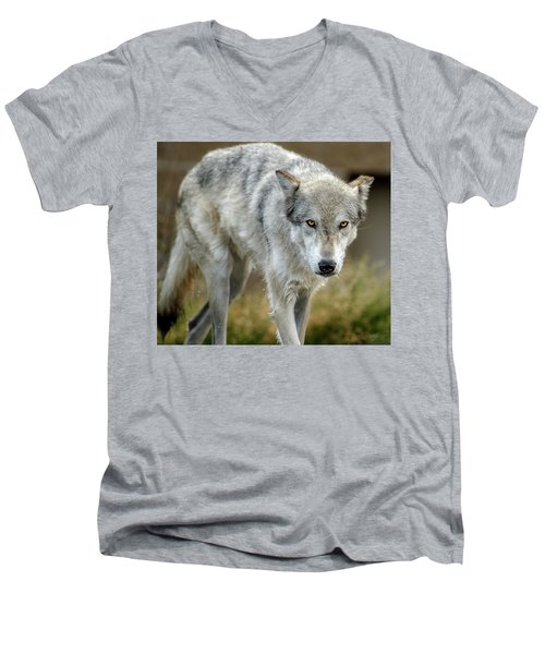 The Grey Wolf Shake Men's V-Neck T-Shirt