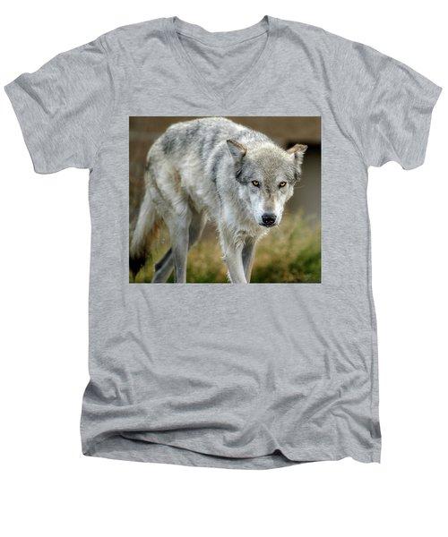 The Grey Wolf Shake Men's V-Neck T-Shirt