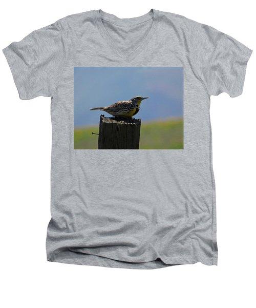The Hawk Squat Men's V-Neck T-Shirt