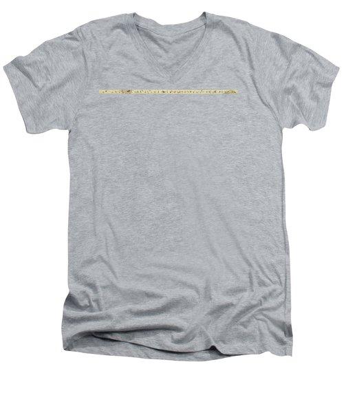The Hegassen Scroll Men's V-Neck T-Shirt