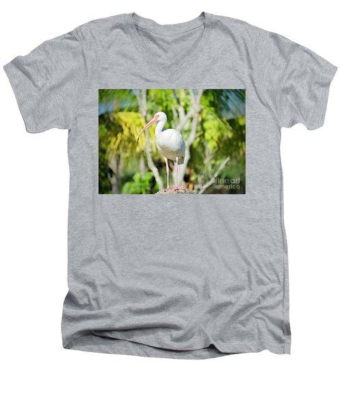 The Ibis Pose Men's V-Neck T-Shirt