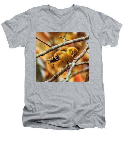 The Inquisitive Goldfinch Men's V-Neck T-Shirt
