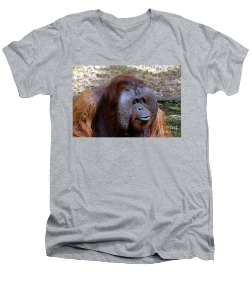 The Jungle V.i.p. Men's V-Neck T-Shirt
