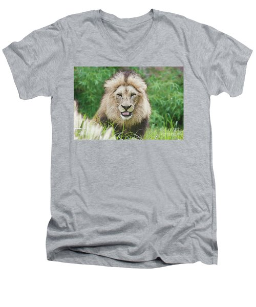 The King Men's V-Neck T-Shirt