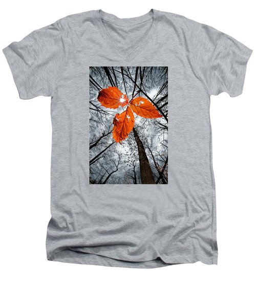The Last Leaf Of November Men's V-Neck T-Shirt by Robert Charity