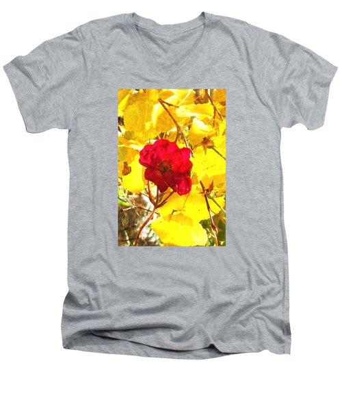 The Last Rose Of Autumn II Men's V-Neck T-Shirt by Anastasia Savage Ealy