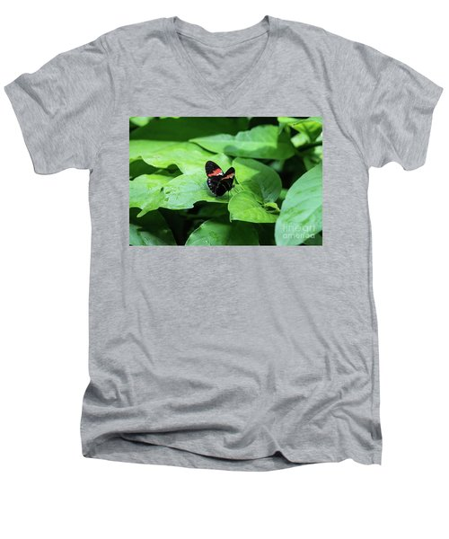 The Leaf Is My Plate Men's V-Neck T-Shirt