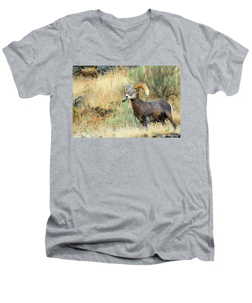 The Loner II Men's V-Neck T-Shirt