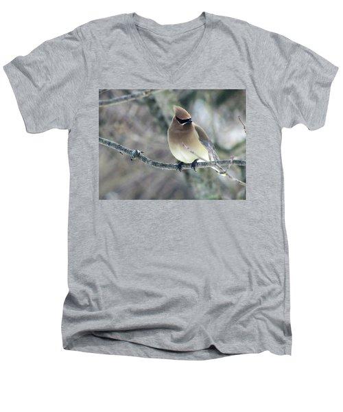 The Masked Cedar Waxwing Men's V-Neck T-Shirt