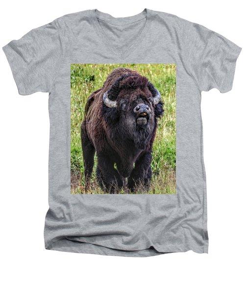 The Mating Call Men's V-Neck T-Shirt