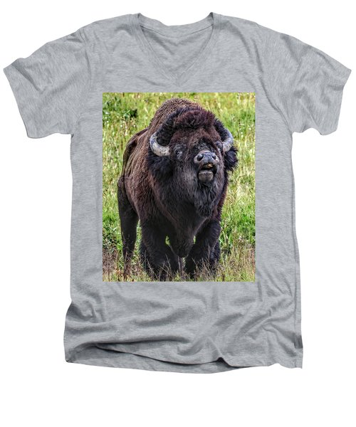 The Mating Call Men's V-Neck T-Shirt