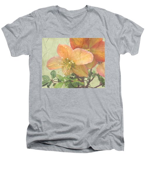 The Mystical Energy Of Nature Men's V-Neck T-Shirt by I'ina Van Lawick
