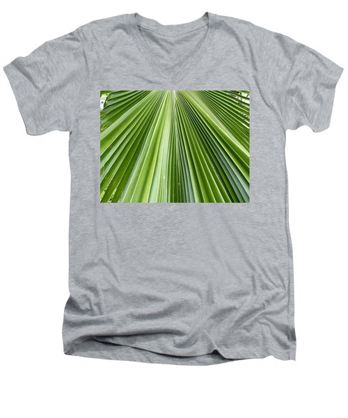 The Nature Of My Abstraction Men's V-Neck T-Shirt