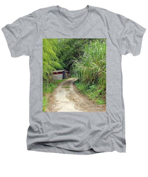 The Old Forest Road Men's V-Neck T-Shirt by Yali Shi