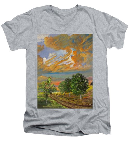 The Old Orchard Men's V-Neck T-Shirt