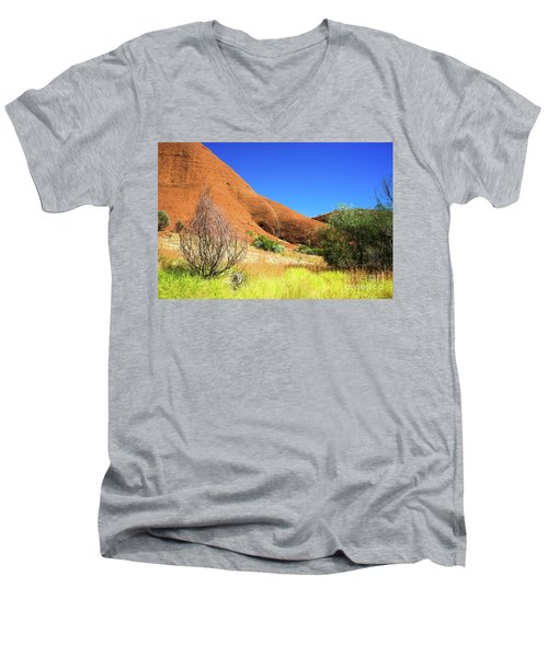 The Olgas Kata Tjuta Men's V-Neck T-Shirt