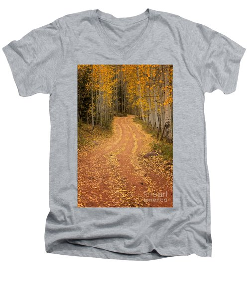 The Pathway To Fall Men's V-Neck T-Shirt