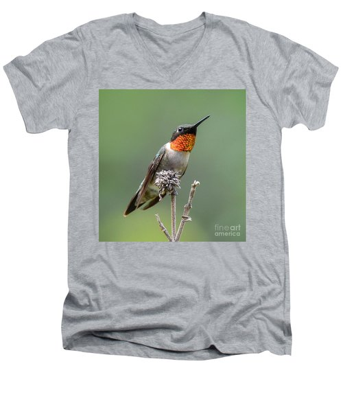 The Perfect Lookout Men's V-Neck T-Shirt by Amy Porter