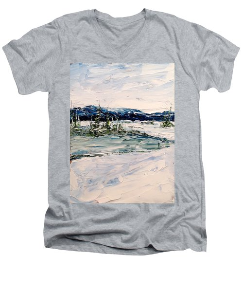 The Pond - Winter Men's V-Neck T-Shirt