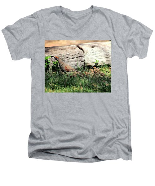 The Quail Family Men's V-Neck T-Shirt