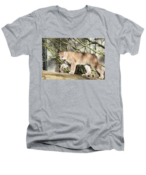 Men's V-Neck T-Shirt featuring the photograph The Red Carpet by Laddie Halupa