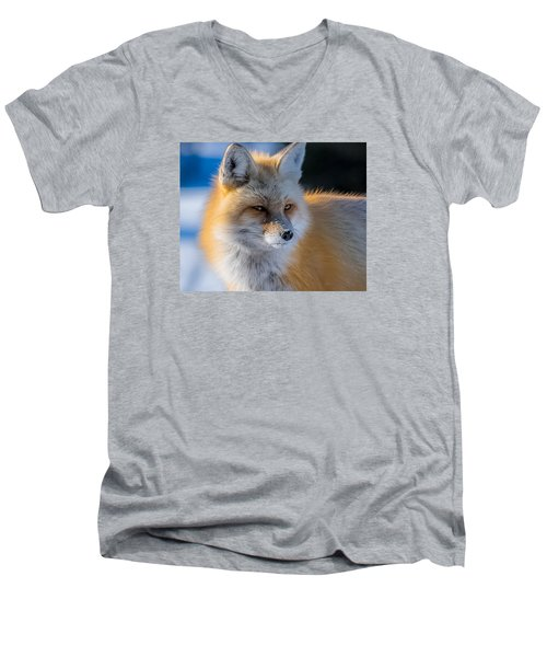 Men's V-Neck T-Shirt featuring the photograph The Red Fox Portrait In Snow by Yeates Photography
