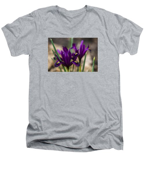 The Rise Of The Early Royal Dwarf Iris Men's V-Neck T-Shirt by Dan Hefle