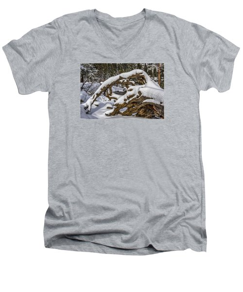 The Roots Of Winter Men's V-Neck T-Shirt by Mitch Shindelbower