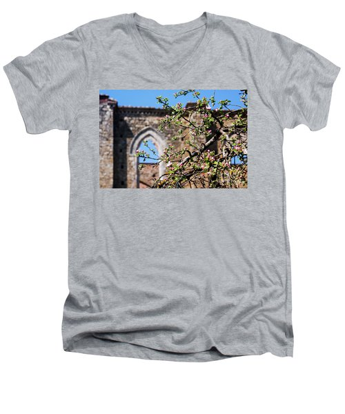 The Sky As A Roof Men's V-Neck T-Shirt
