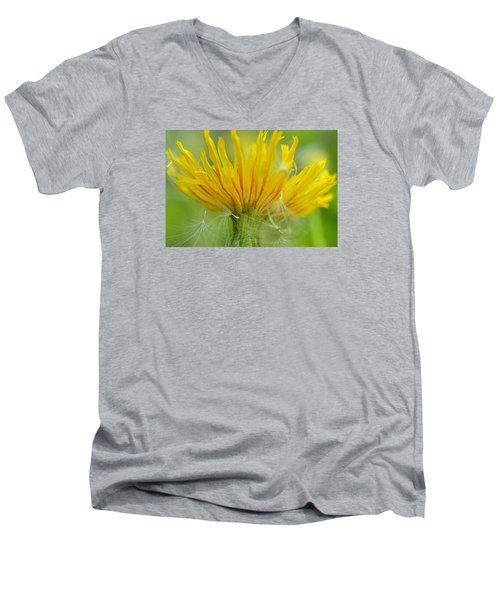The Sow And Silk Men's V-Neck T-Shirt by Janet Rockburn