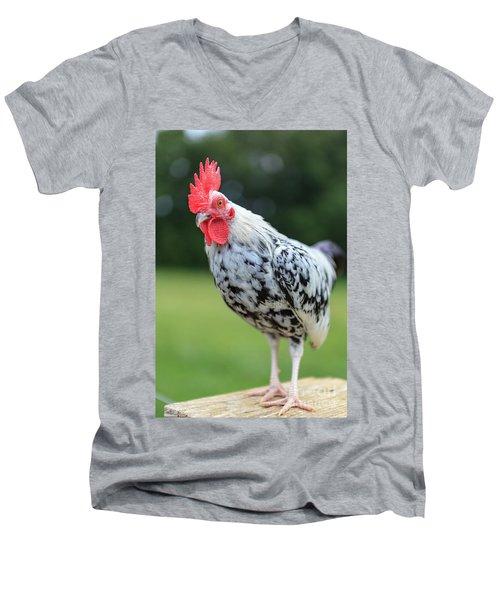 The Speckled Chicken Men's V-Neck T-Shirt