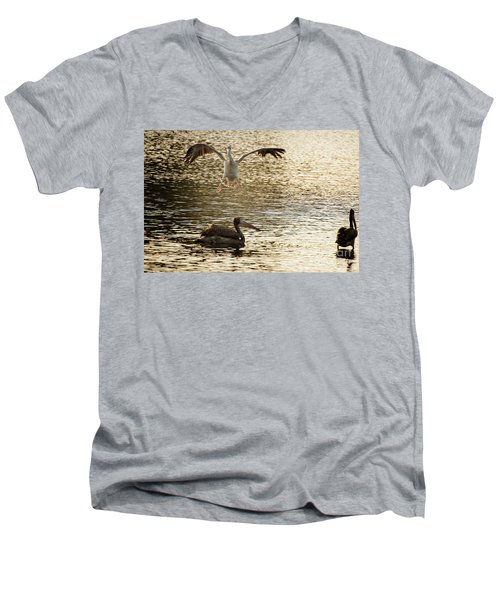 The Spot-billed Pelican Or Grey Pelican  Pelecanus Philippensis  Men's V-Neck T-Shirt