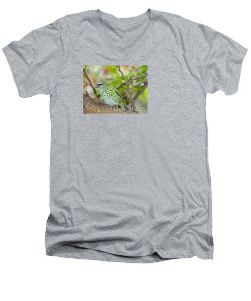 Men's V-Neck T-Shirt featuring the photograph The Spotted Tanager by Judy Kay