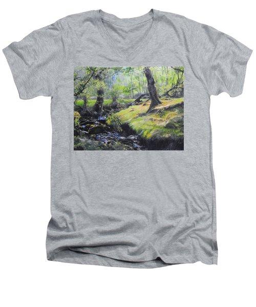 The Stream At The Farm Men's V-Neck T-Shirt