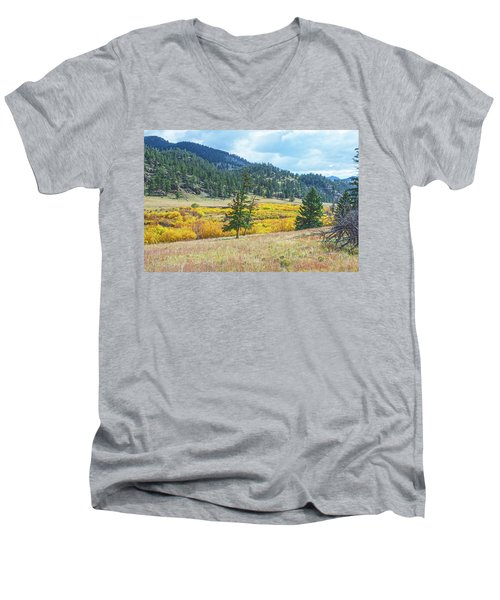 The Sublime Beauty That Ensorcells The Soul.  Men's V-Neck T-Shirt