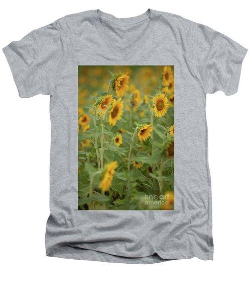 The Sunflower Patch Men's V-Neck T-Shirt