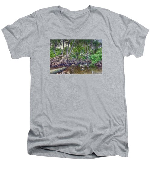 The Swamp Men's V-Neck T-Shirt